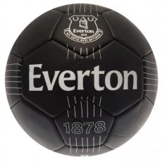 Futbalová lopta Everton FC