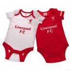 Soška FC Liverpool