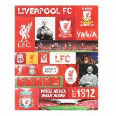 Magnetky FC Liverpool